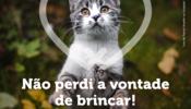 cartaz_esterilizacao_gato_aprovado